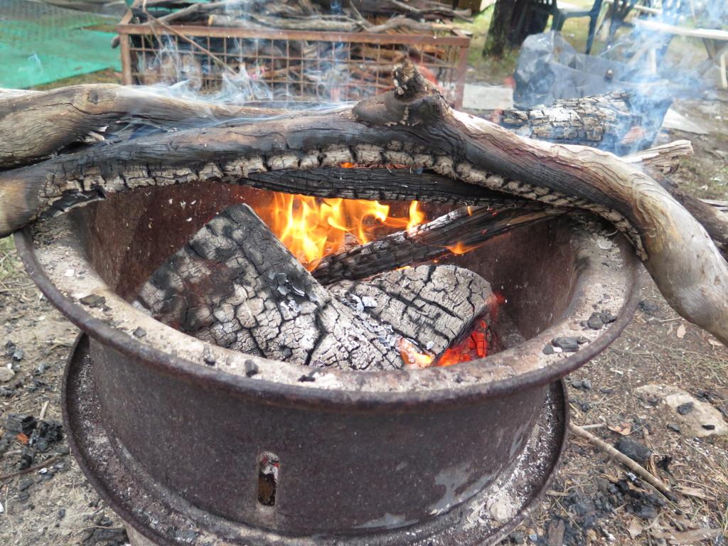 Pot belly bush fire
