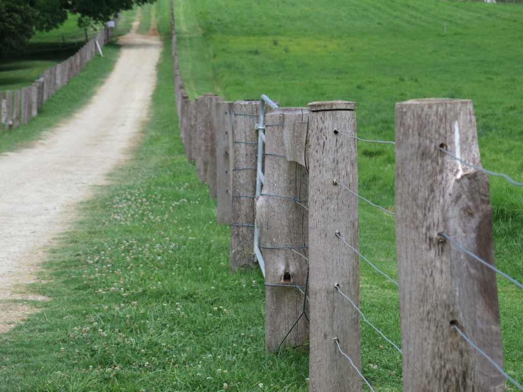 Fence at the farm brings back wanderlust