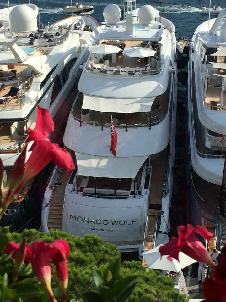 Monaco Wolf