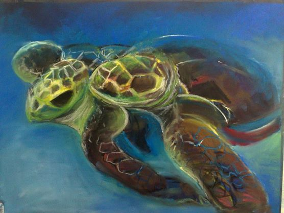 turtles by Sam